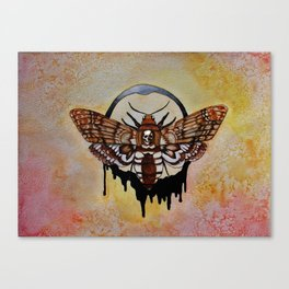 Death's Head Hawk Moth Canvas Print