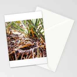 Arizona Shrubbery Stationery Cards