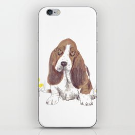 Basset Hound iPhone Skin