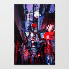 Flowers and Lanterns Canvas Print