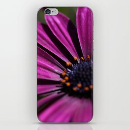 pure purble iPhone Skin