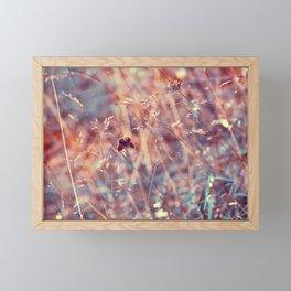the fleeting kiss of summer Framed Mini Art Print