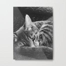my pet, Peeve Metal Print