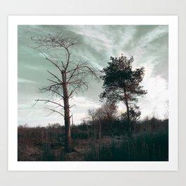 Dead Tree - Live and Die Art Print