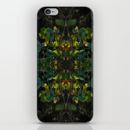 natural geometry iPhone Skin