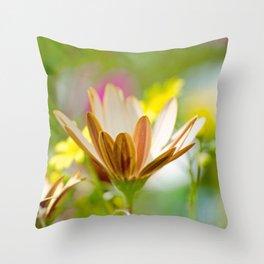 Pastel Meadow Throw Pillow