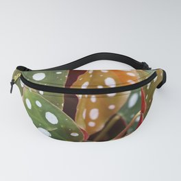 The Polka Dot Leaves of Begonia Wightii Fanny Pack