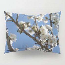 Cherry Blossom Branches Against Blue Sky Pillow Sham