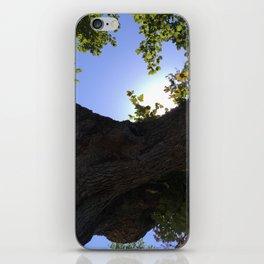 Summer Sky iPhone Skin