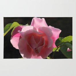 Rose rose Rug