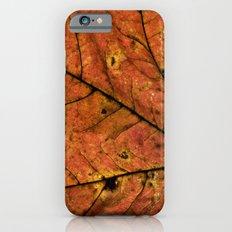 Fall Leaf III Slim Case iPhone 6s