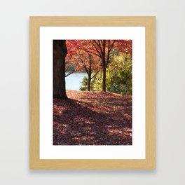 Autumn Shade Framed Art Print