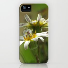 Salsify iPhone Case