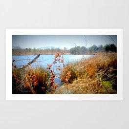 Peaceful Nature Art Print