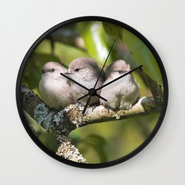 3 Bushtit Songbirds in the Pear Tree Wall Clock
