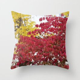 Burning Bush 2 Throw Pillow