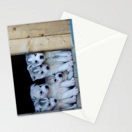 Husky puppies Stationery Cards