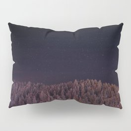 Frosted Pillow Sham