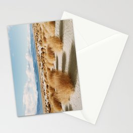 Paiute Land Stationery Cards