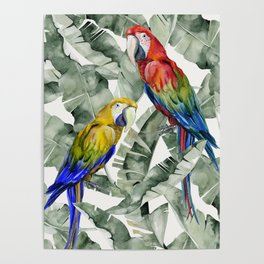 PARROTS IN THE JUNGLE Poster