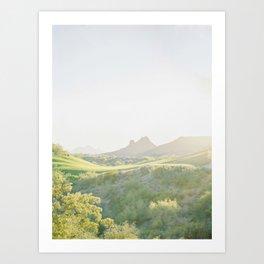 Camelback Art Print
