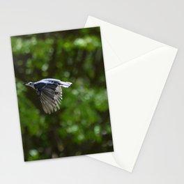 Nuthatch Stationery Cards