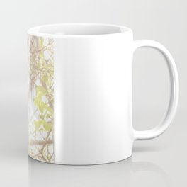 Taunting Kuma Coffee Mug
