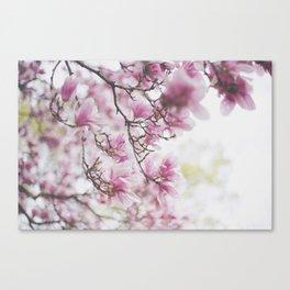 . hiding . Canvas Print