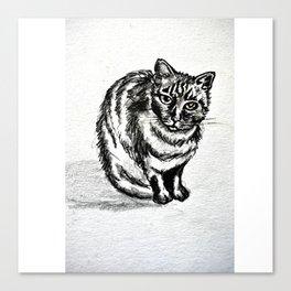lolita cat Canvas Print