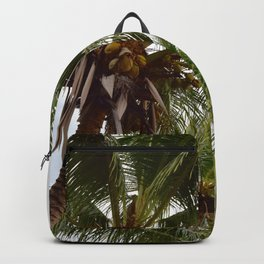 Costa Palms Backpack