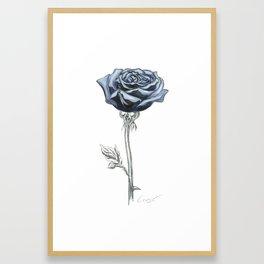 Rose 03 Botanical Flower * Blue Black Rose : Love, Honor, Faith, Beauty, Passion, Devotion & Wisdom Framed Art Print