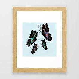 Purple and Blue Butterflies  Framed Art Print