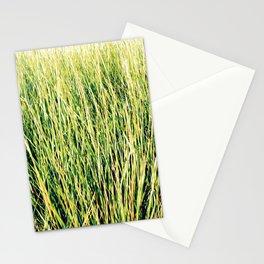 Tillinghast Place 07 Stationery Cards