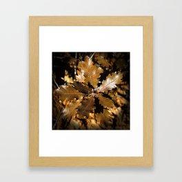 Oak Leaves Framed Art Print