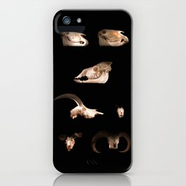 Skull Cabinet iPhone Case