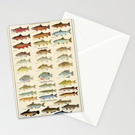 Illustrated Eastern Game Fish Identification Chart Stationery Cards