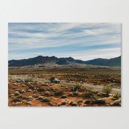 free to roam Canvas Print