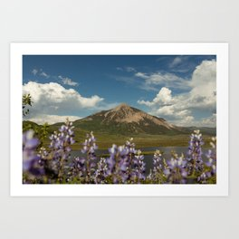 Mount Crested Butte through the Lupines  Art Print