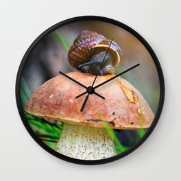 Leccinum on grass with snail Wall Clock