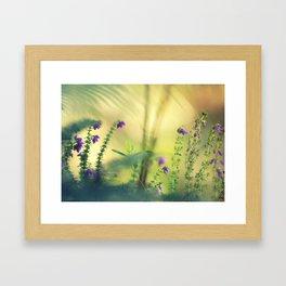 Between light and shadow Framed Art Print
