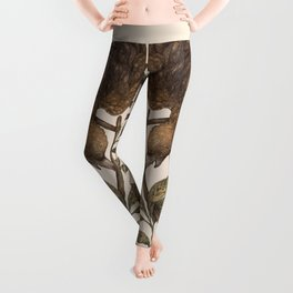 Cosmos - Lyra Leggings