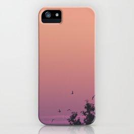 Volando iPhone Case