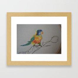 Rainbow Loriket Framed Art Print
