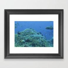Shadow reef 3 Framed Art Print