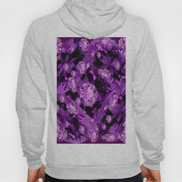 GALAXY OF PURPLE AMETHYST FACETED JEWEL GEMS BIRTHSTONE Hoody
