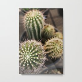 Cactus in Green & Gold Metal Print