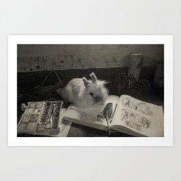 Artistic Bunny Rabbit  Art Print