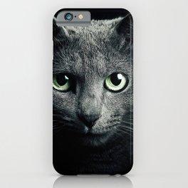 Gray Cat iPhone Case