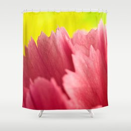 Closer Look Redux - The Flower Collection Shower Curtain