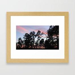 Pastel Sunset Black Trees Framed Art Print